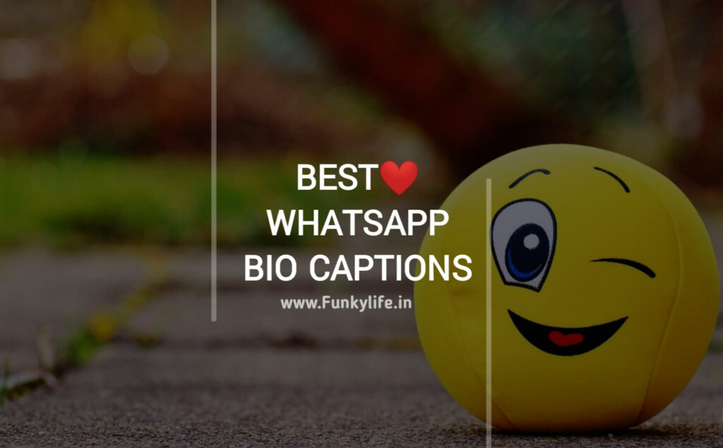 WhatsApp Bio Captions