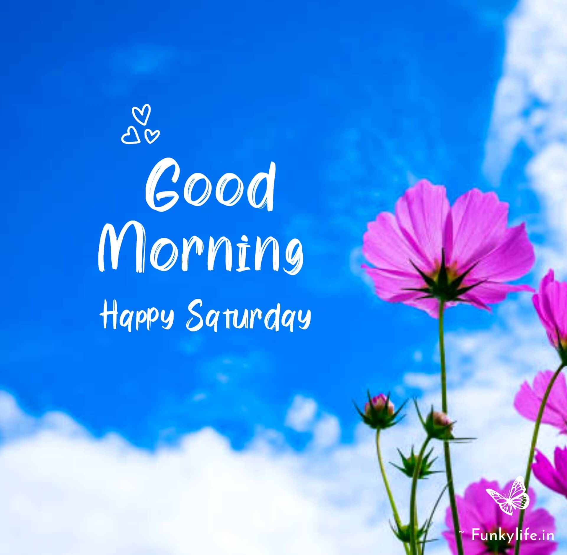 Good Morning Images for Saturday