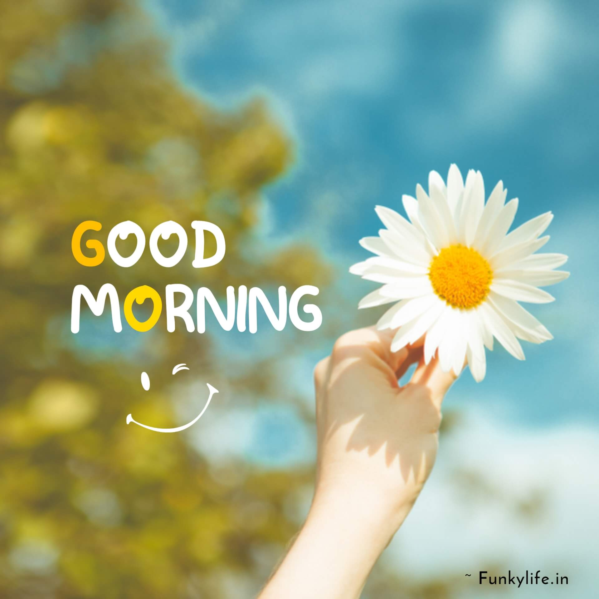 Best Good Morning Images With Smile