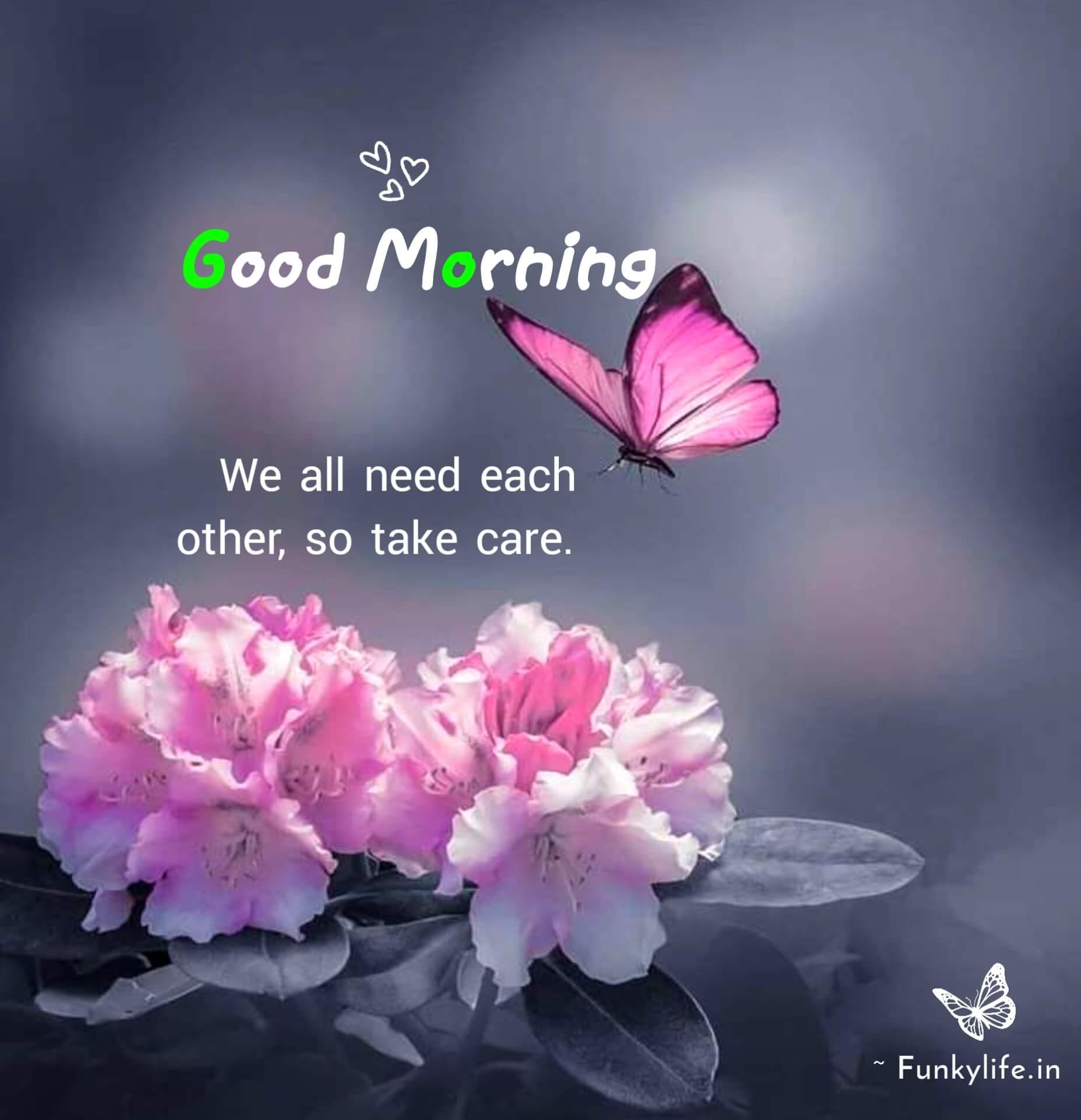 Good Morning Messages Photos