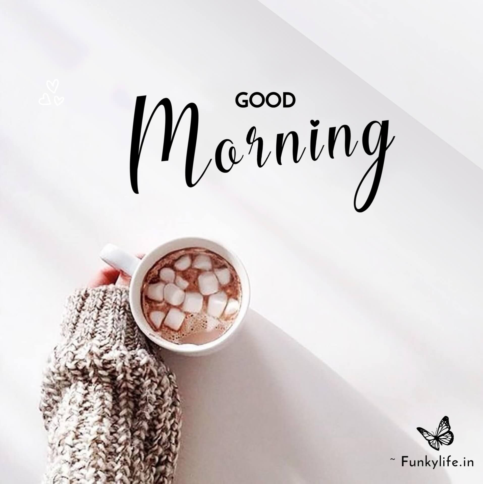 Fresh Good Morning Images