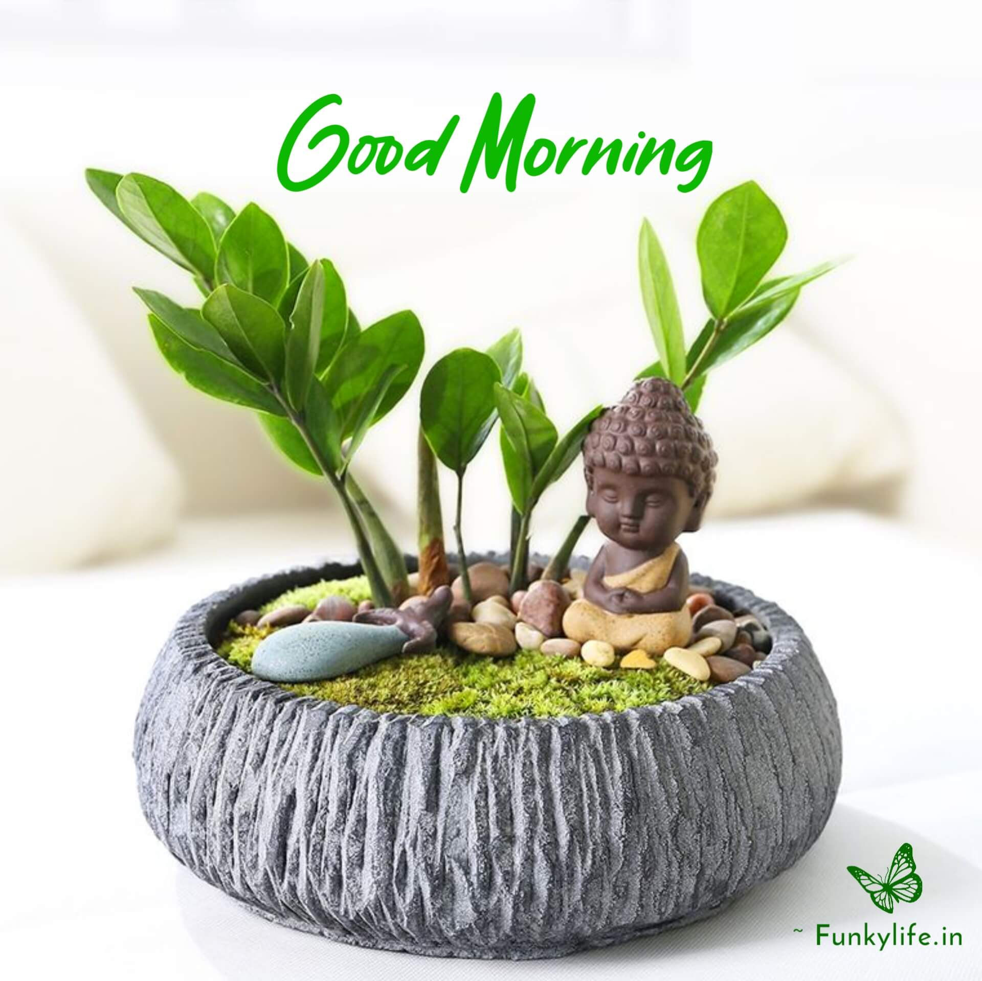 Good Morning Images with Buddha