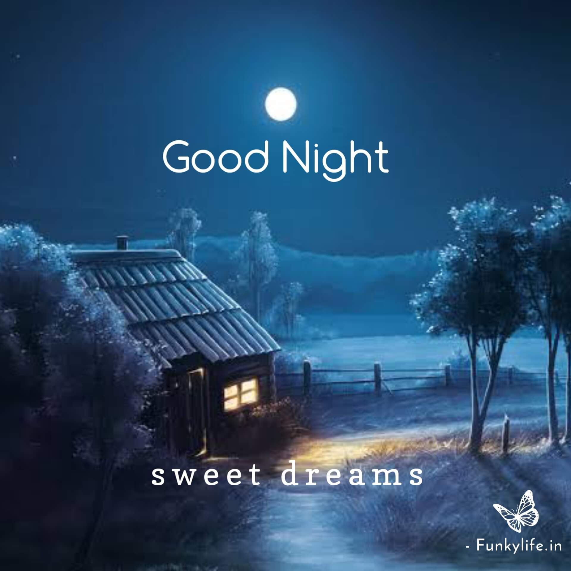 Beautiful Goodnight Pictures