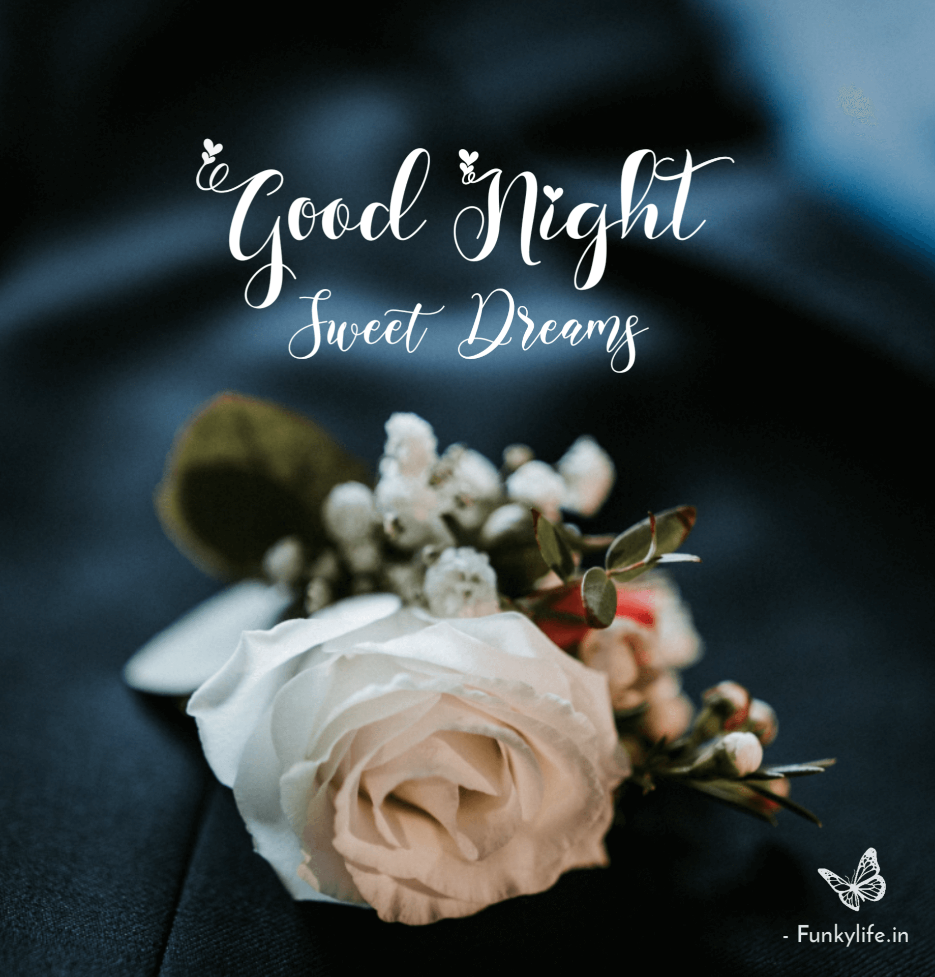 Good Night Flower Message Images