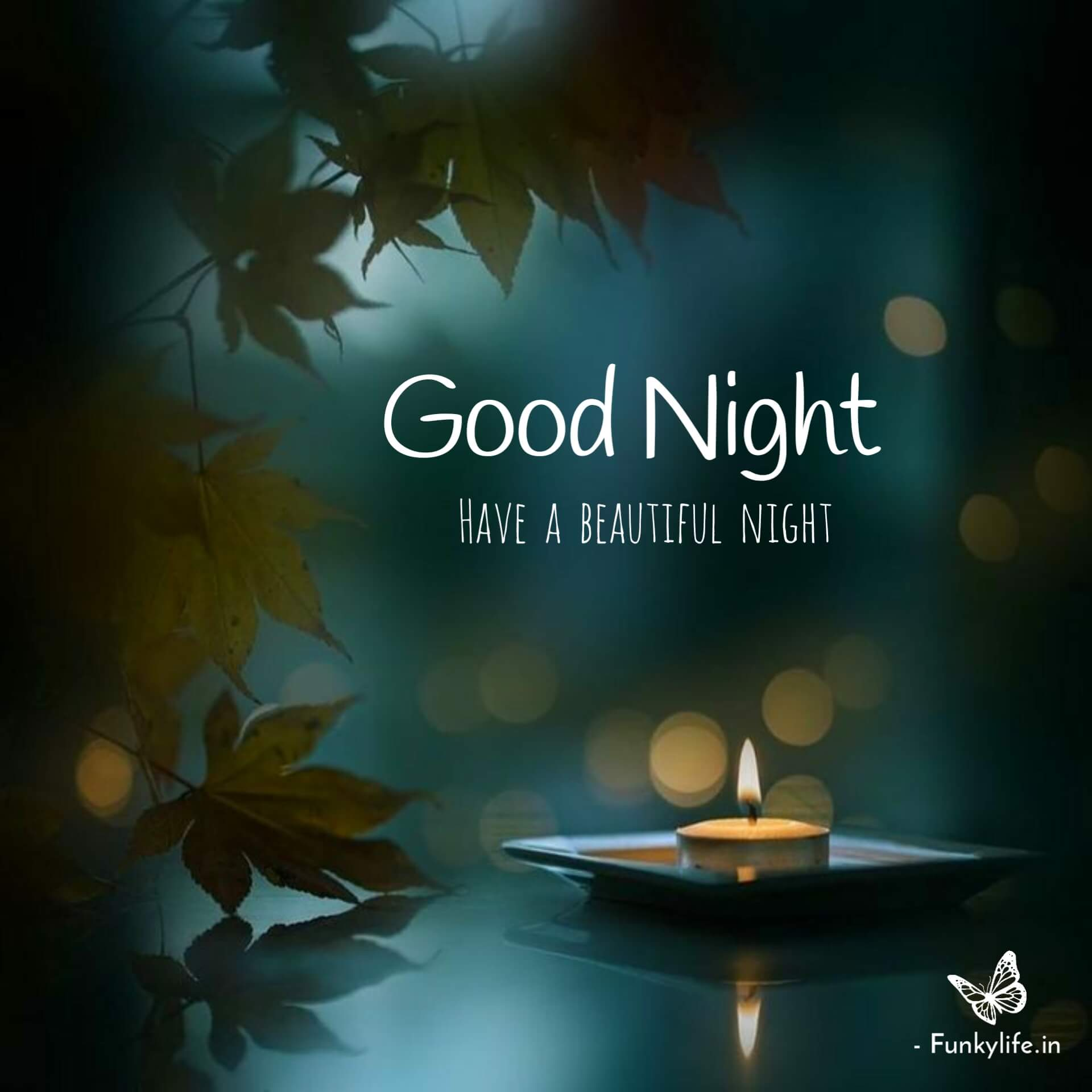 have a beautiful night image