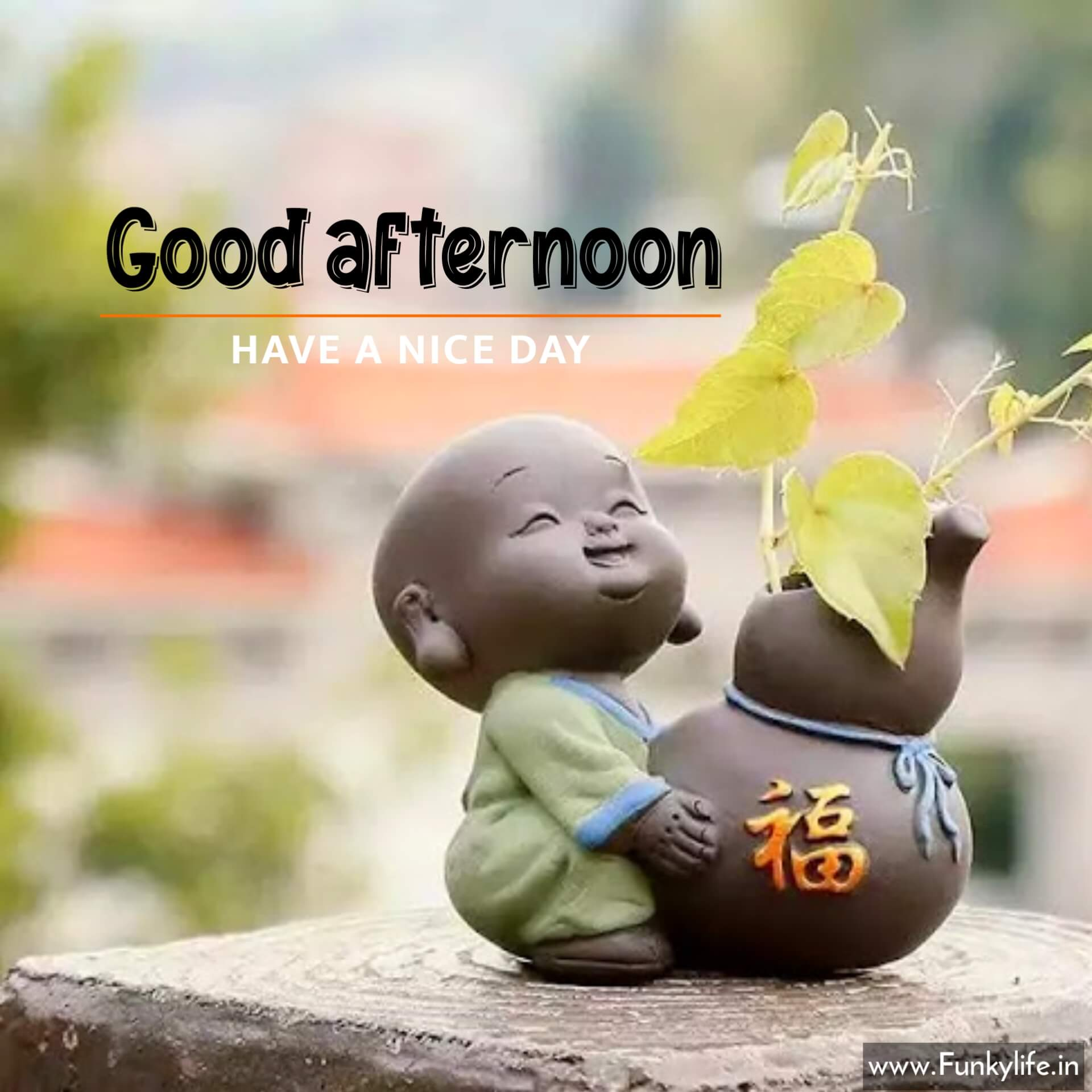 Buddha afternoon Wishes
