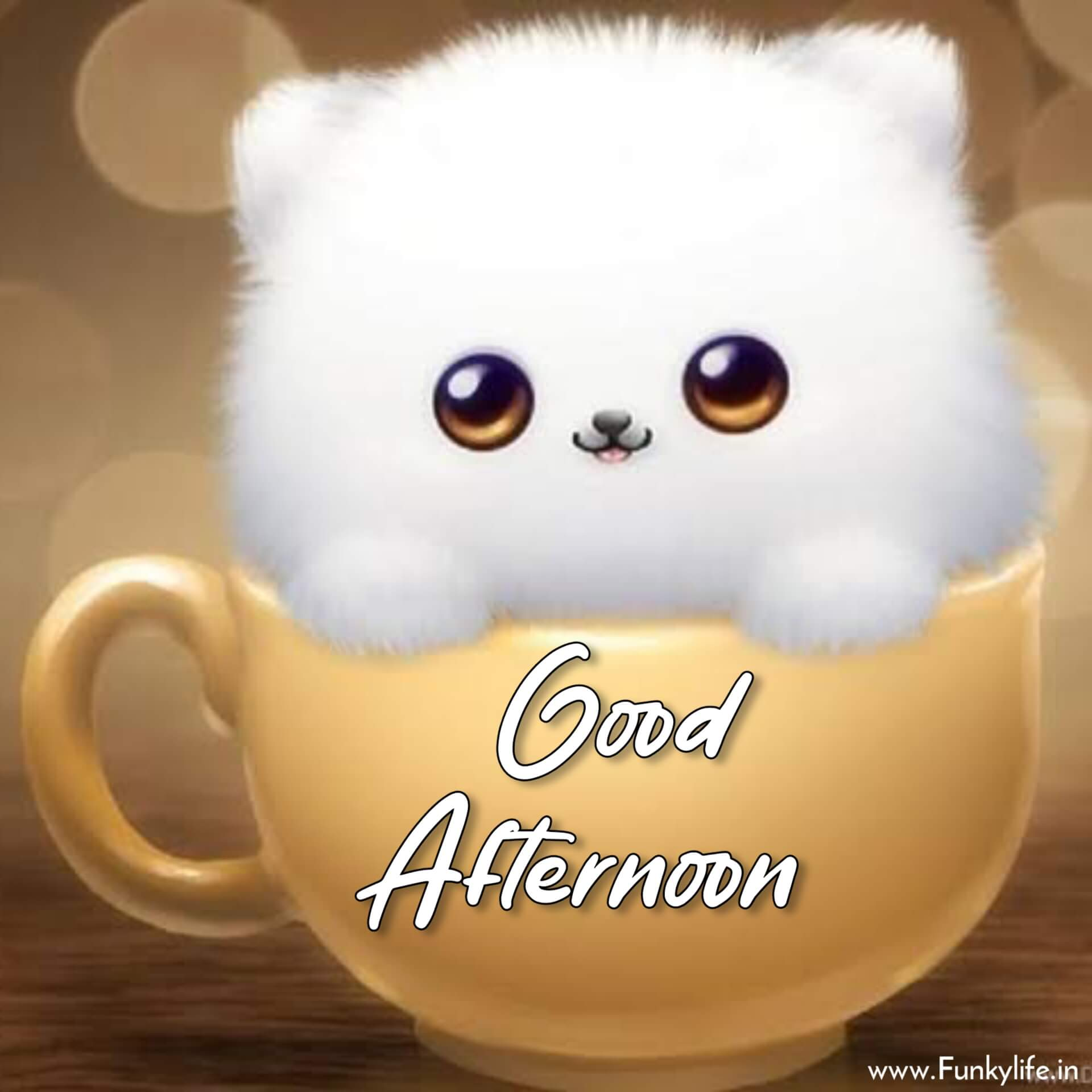 Cute Good Afternoon DP Pic