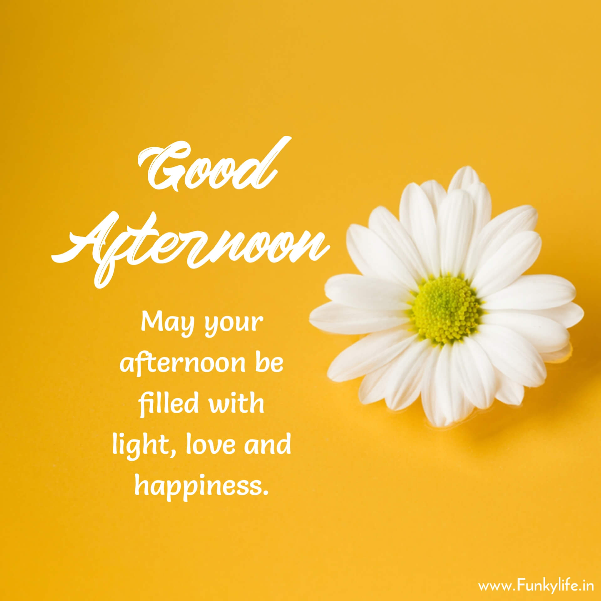 Good Afternoon wish Image with Quote