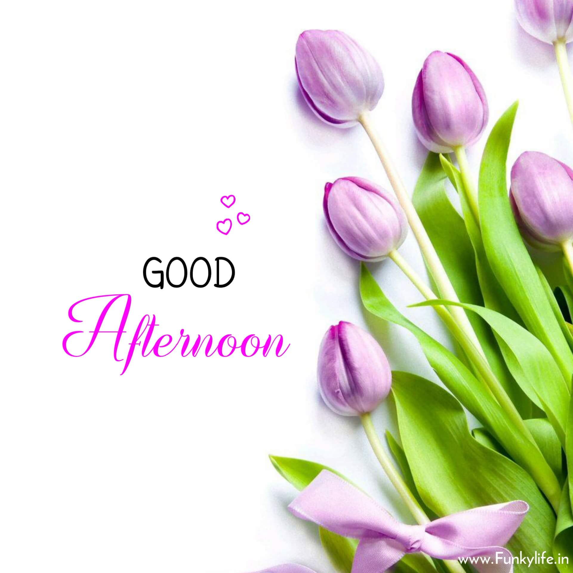 HD Good Afternoon Image