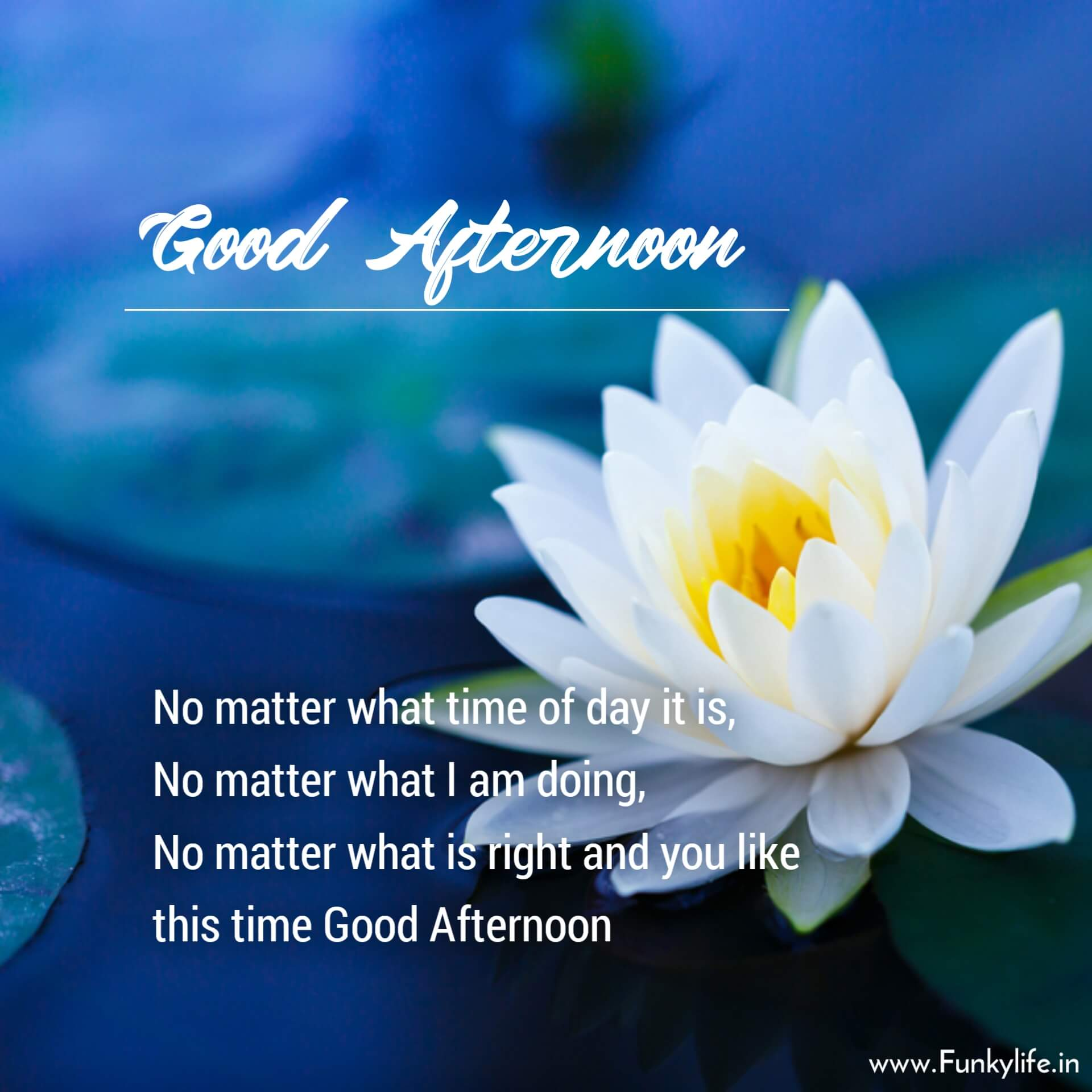 Good Afternoon Images with Quotes