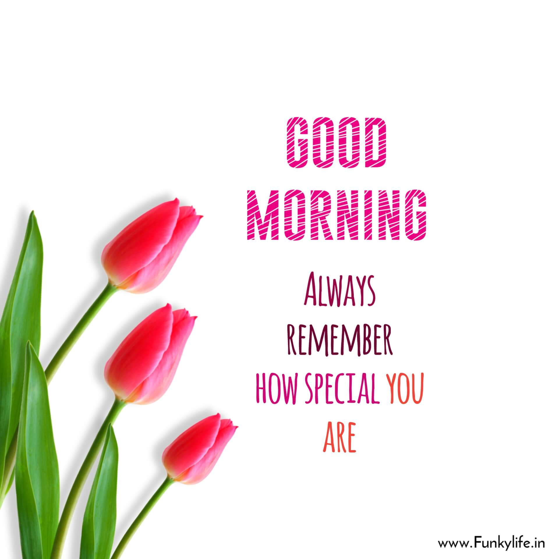 Special Good morning message