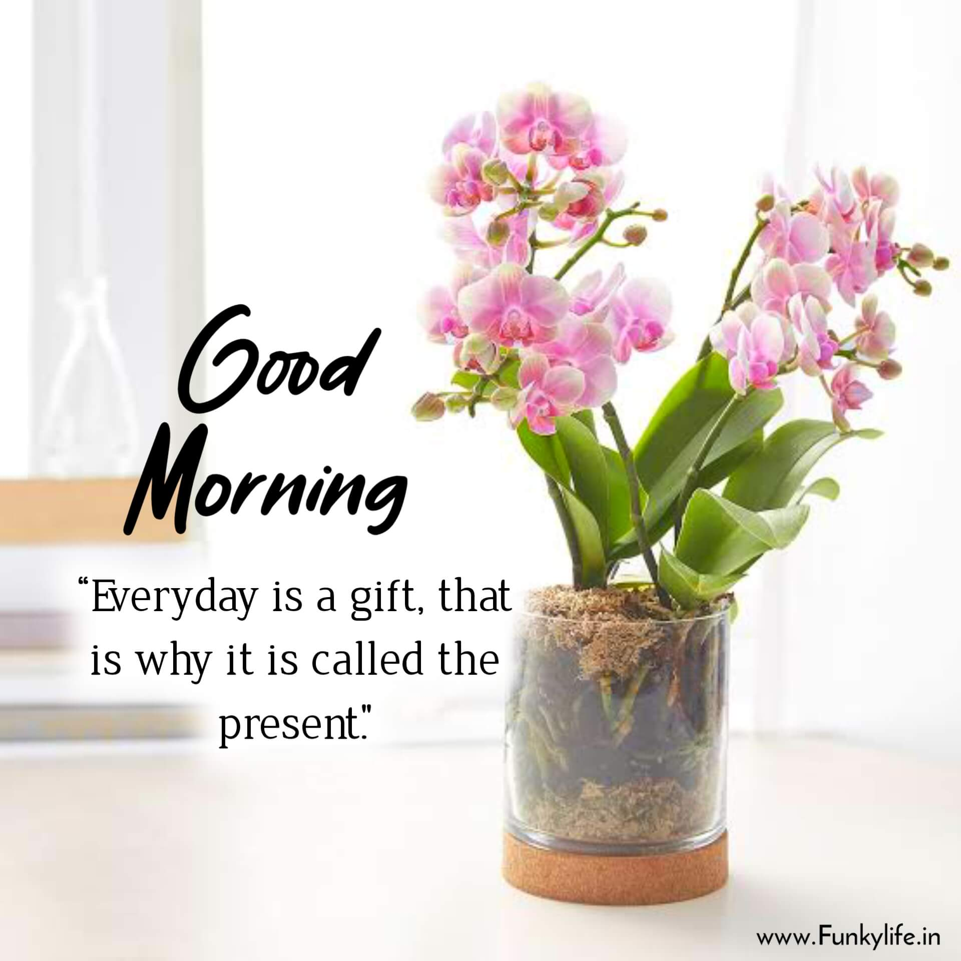 Good Morning Quote With Image