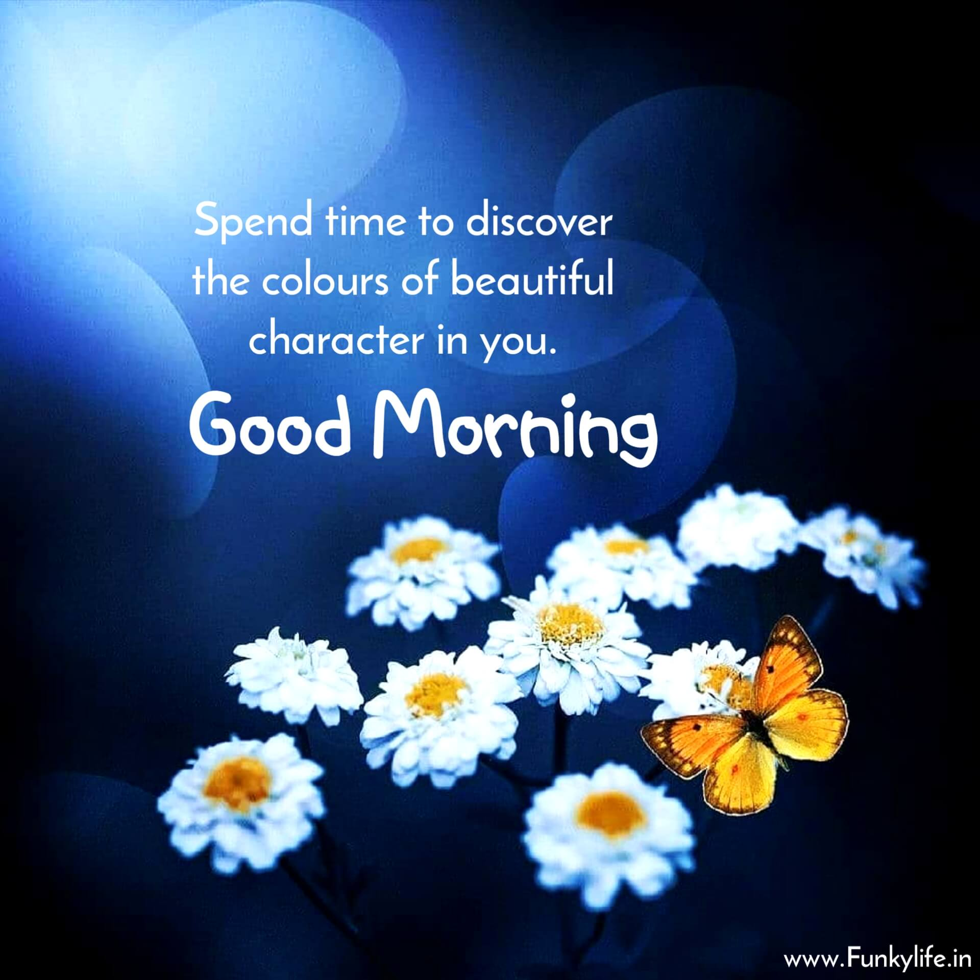 Beautiful Good Morning Image with Quotes