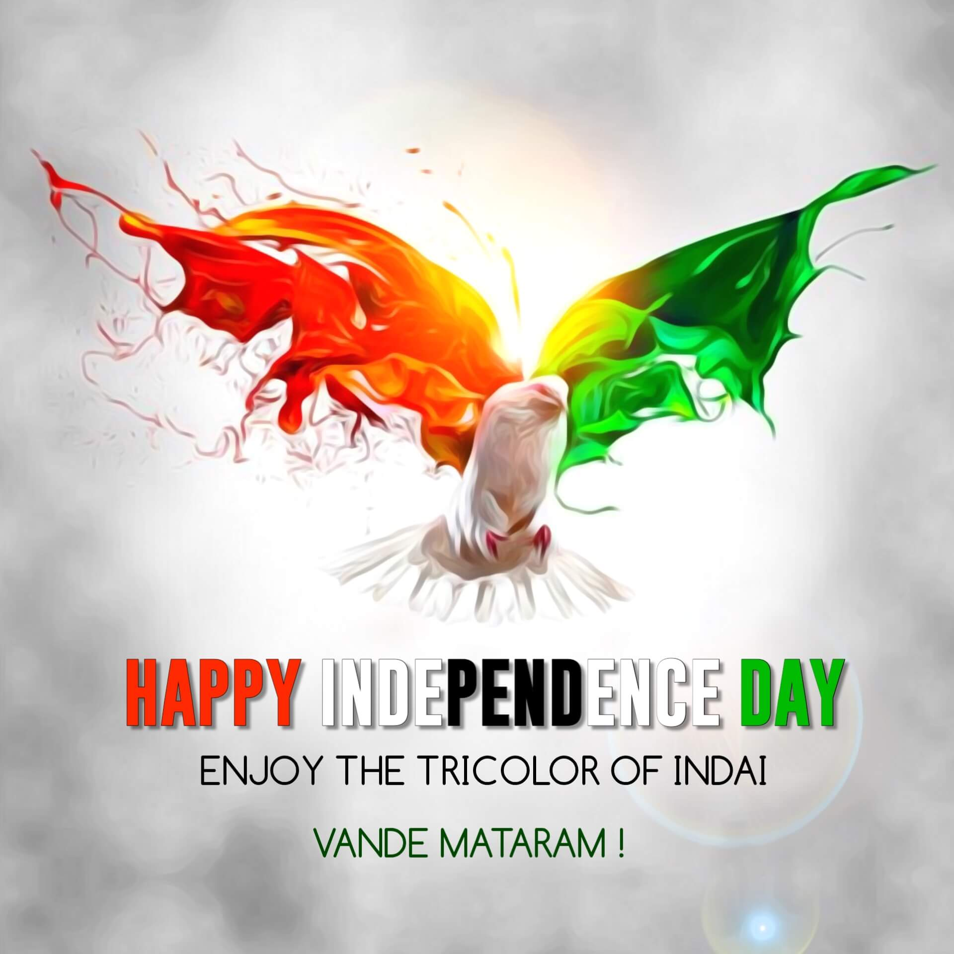 Creative Tricolor Independence Day