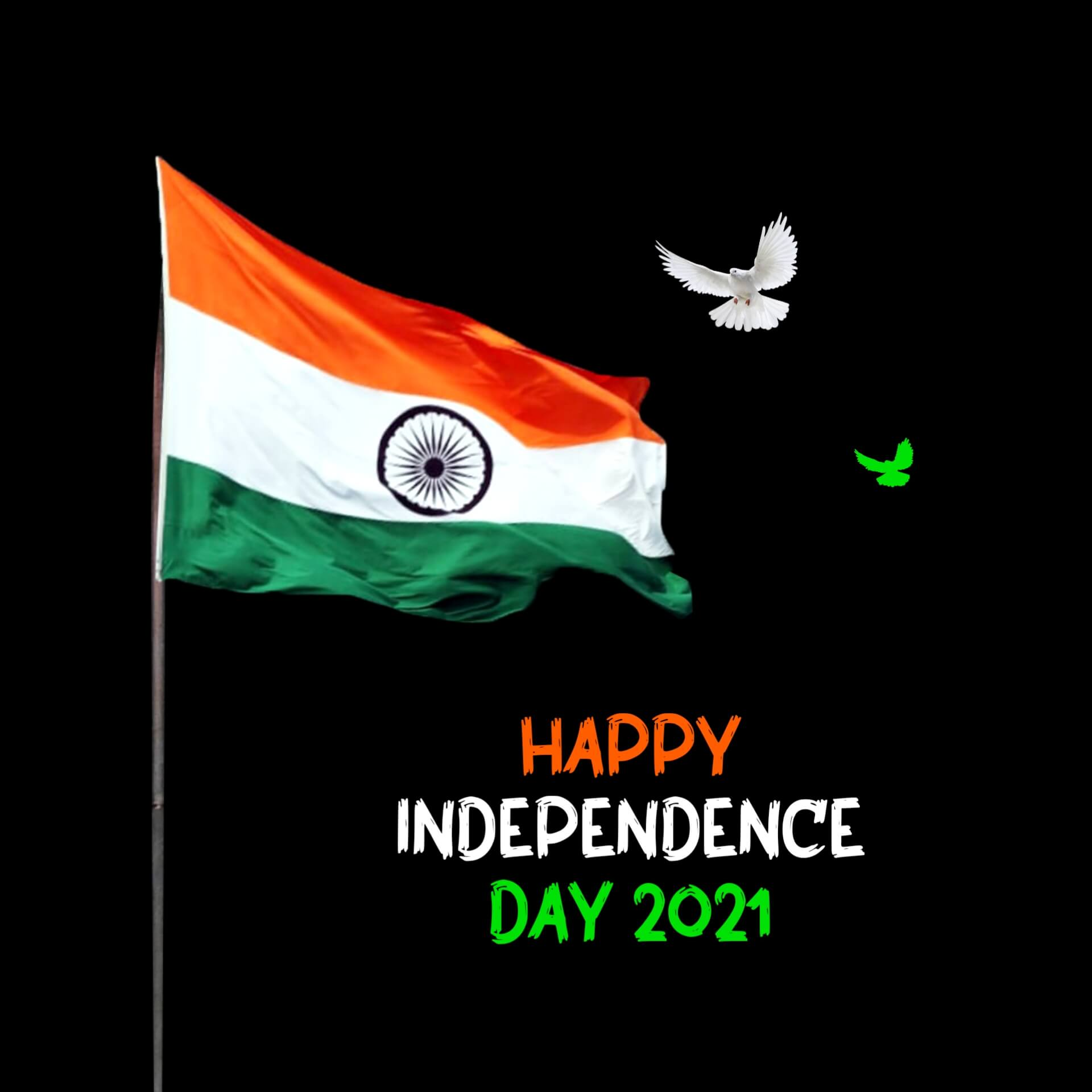 Independence Day Celebration Pic