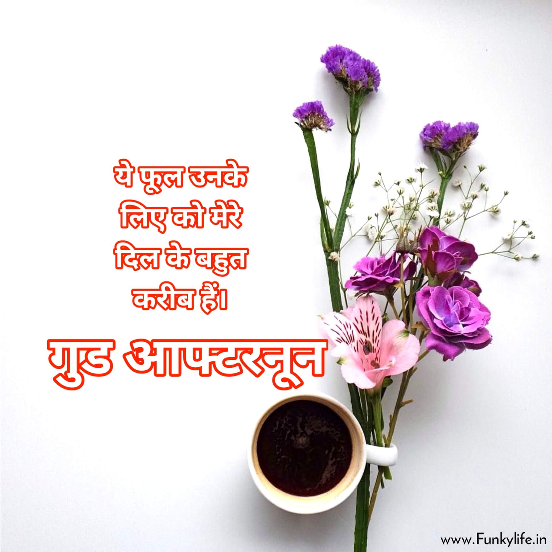 Flower Good Afternoon Image in Hindi