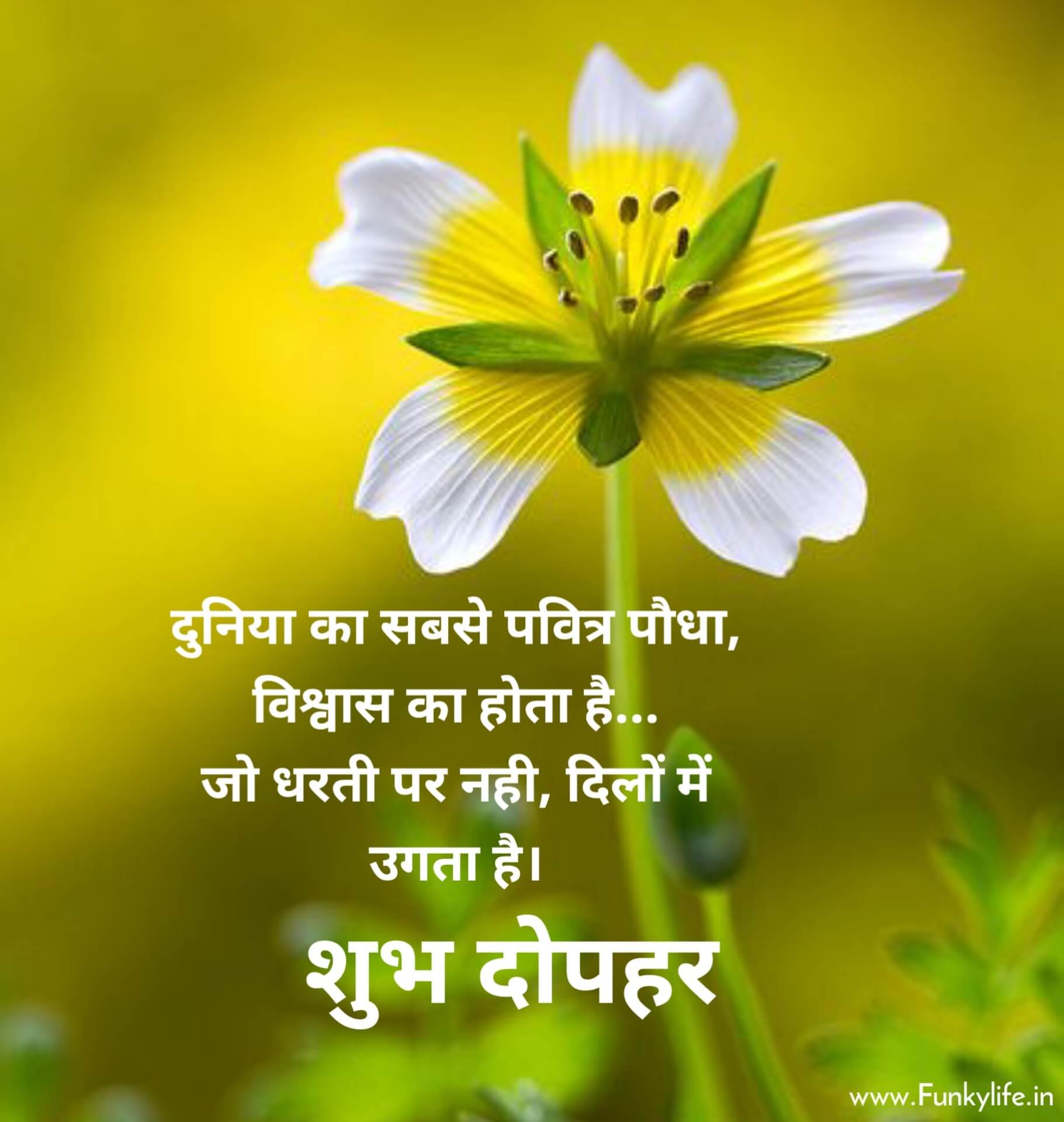 Shubh Dopahar with Quote in Hindi