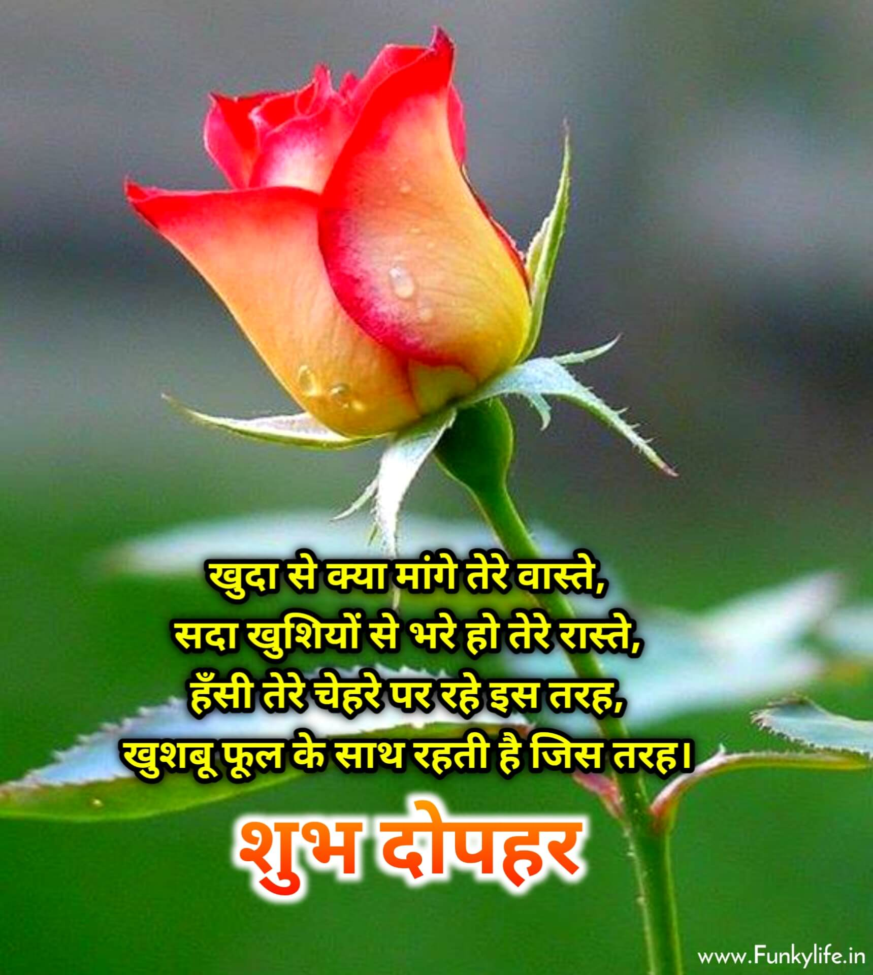 Shubh Dopahar Image with Quote in Hindi