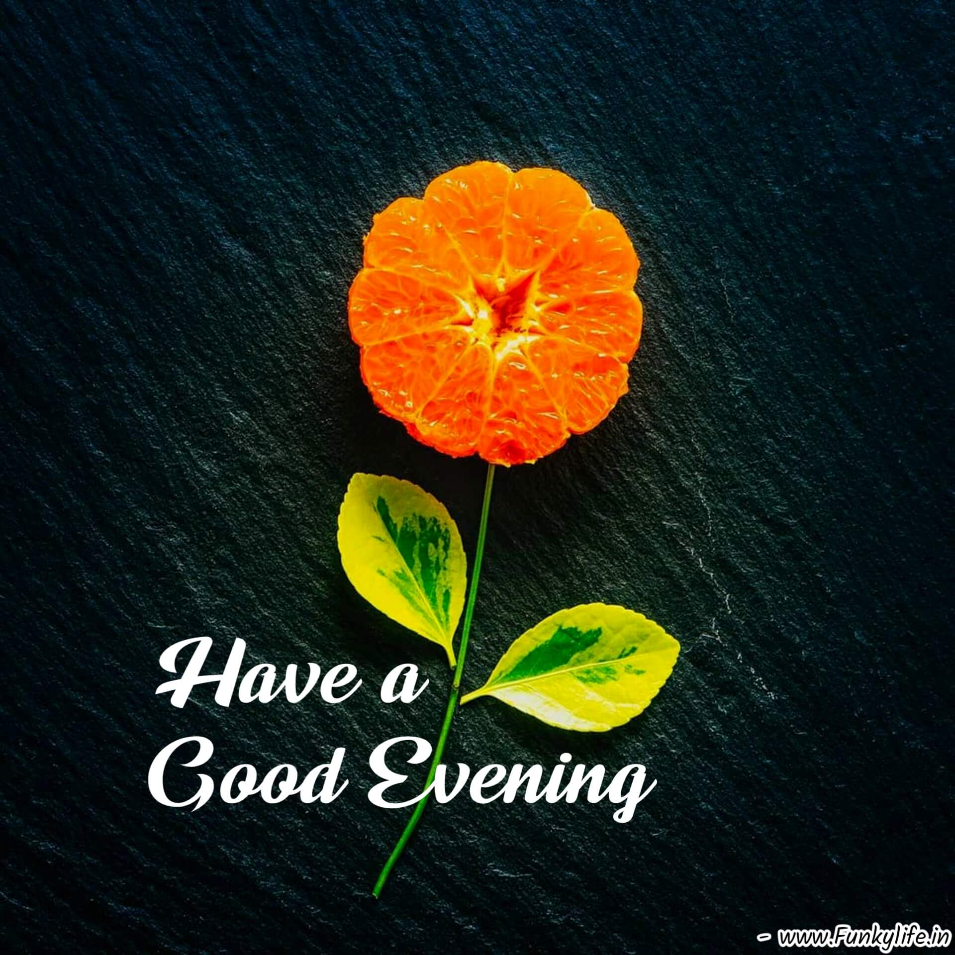 Different Good Evening Images