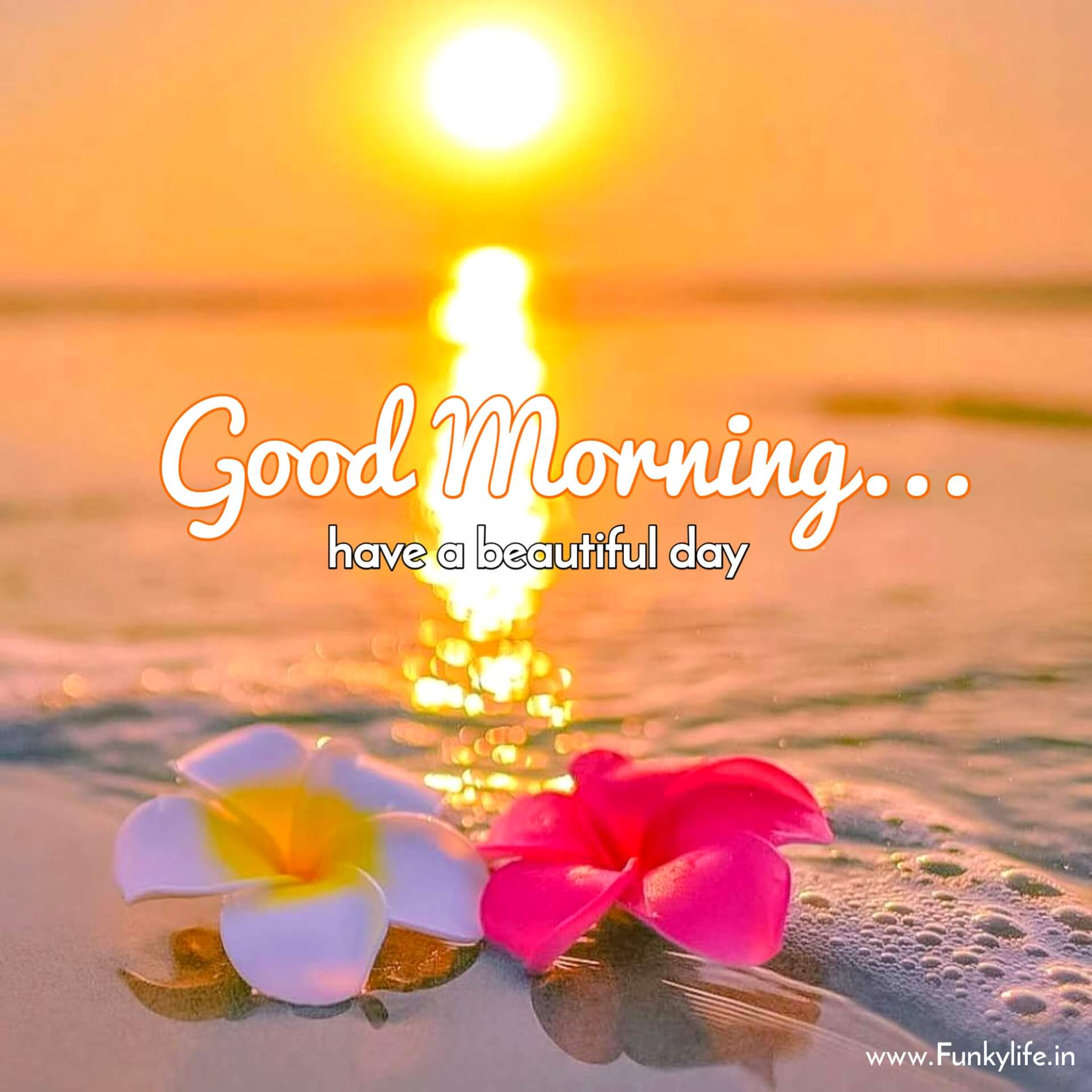 Sun Rise Good Morning Images