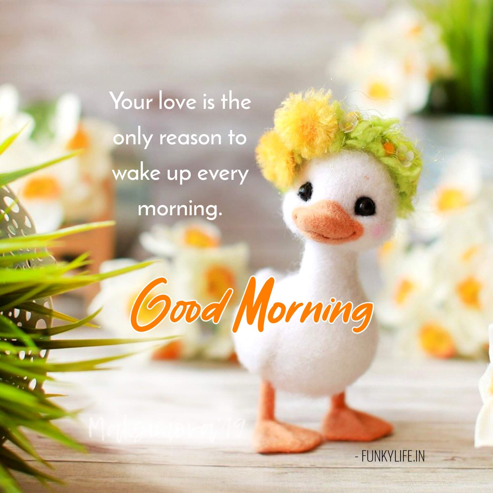 Cute Good Morning Quotes With Images