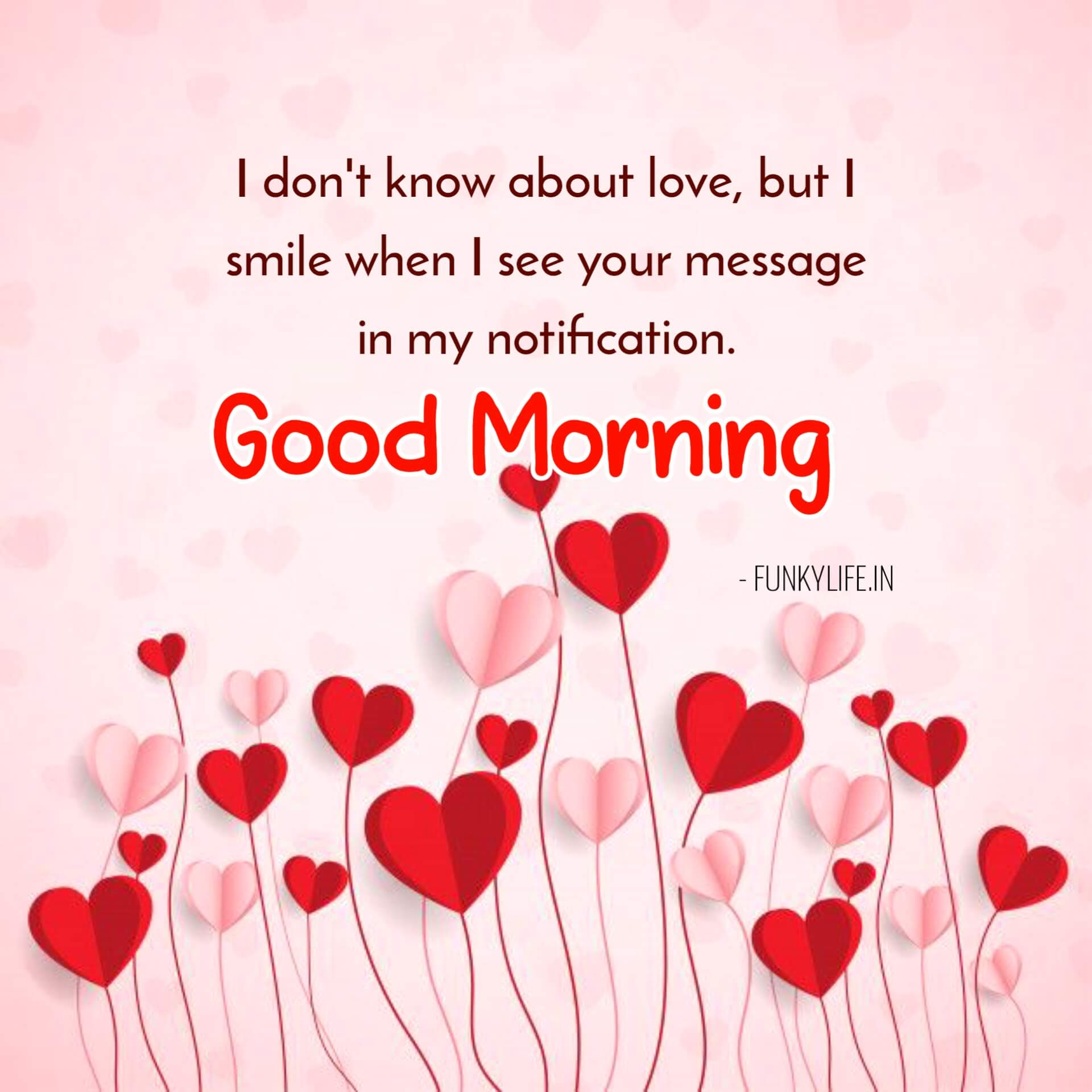 Lovely Good Morning Quotes With Images