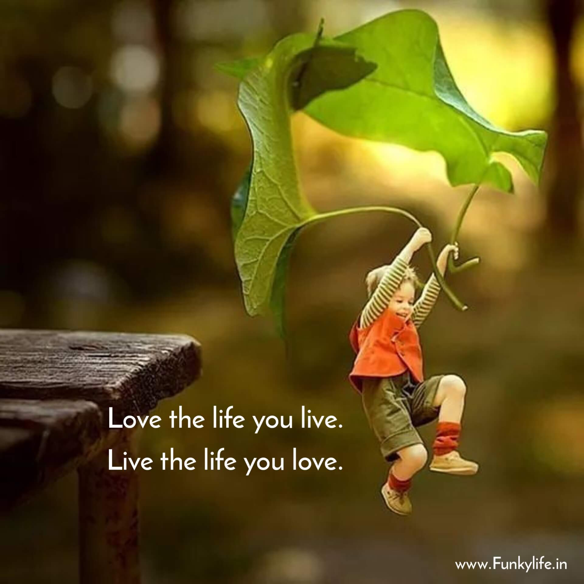 Love Life Quotes in English